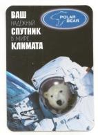 Pocket Calendar - Russia - 2006 - Animals - White Bear - Space - Advertising Firm - Calendarios