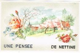 Nettine , Une Pensée De ... - Somme-Leuze