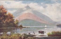 Tucks Innisfallen Sunnyside Of Ireland Series - Tuck, Raphael
