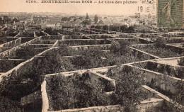 Montreuil Sous Bois - Le Clos Des Pêches - Montreuil