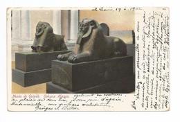 Musée De GUIZEH (GIZEH, Egypte) - Sphynx Hyksos - Egypt