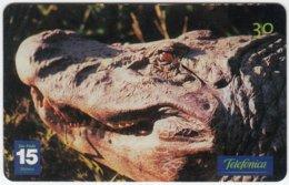 BRASIL C-277 Magnetic Telefonica - Animal, Crocodile - Used - Brésil