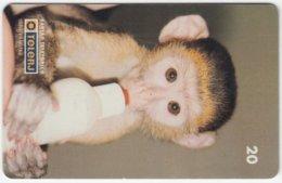 BRASIL D-135 Magnetic TeleRJ - Animal, Monkey - Used - Brésil