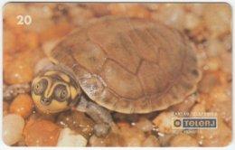 BRASIL D-143 Magnetic TeleRJ - Animal, Sea Life, Turtle - Used - Brésil