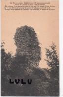 DEPT 71 : Beaubery , Ruines Du Chateau D Artus - Altri Comuni