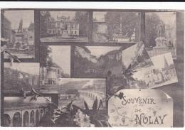 CPA NOLAY 21 SOUVENIR MULTI VUES 1919 - France