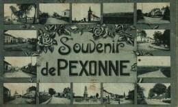 CPA (54)     Souvenir De PEXONNE  -   Plusieurs Petites Vues - Autres Communes