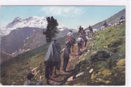 Suisse - Zonder Classificatie