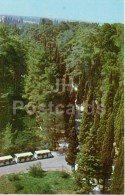 Cypresses - Pitsunda - Abkhazia - 1970 - Georgia USSR - Unused - Géorgie