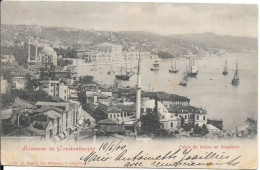 1900 - Souvenir De Constantinople - Palais Du Sultan Au Bosphore - Turquie
