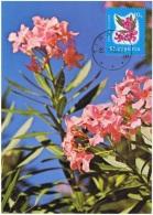 FLORA-L149 - ALBANIE Carte Maximum Fleurs De Lauriers - Pflanzen Und Botanik