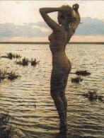 Nue Au Soleil Couchant - Nus Adultes (< 1960)