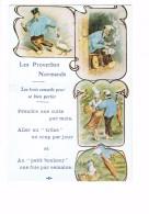 Cpsm -humour Illustrée - Proverbes Normands -  Homme Ivrogne Saoul Bouteille Vin Cuite Pipe Parapluie WC Toilettes - Schweine