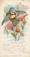 OISEAU MESANGE BLEUE  CARTE POSTALE EDITEE POUR LE CHOCOLAT LOUIT FORMAT  14 X 7.50 CM - Oiseaux