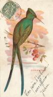 OISEAU  CYNANTHE  CARTE POSTALE EDITEE POUR LE CHOCOLAT LOUIT FORMAT  14 X 7.50 CM - Oiseaux