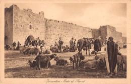 "04428 ""JERUSALEM - PORTE D'ERODE HERODESTOR"" ANIMATA, ANIMALI. CART NON SPED - Palestina"