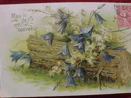Cpa  FLEURS CAMPANULES Des BOIS, Relief Dorures 1906   SOUVENIR  , BLUE FLOWERS Of The WOOD Recto Verso Prix Fixe - Fleurs