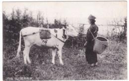 Japan, Woman With Cow, Farmer Farming, C1930s Vintage Postcard - Giappone