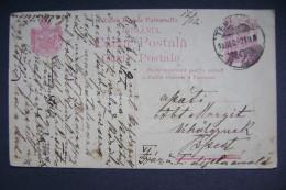 Romania: Stationery Entier Ganzsache, King Ferdinand 1 Leu - Postmark TEMESVAR Timisoara - Sent To Budapest 1921 - Enteros Postales