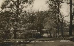 LONDON - STREATHAM COMMON - THE AVENUE RP Lo579 - London Suburbs