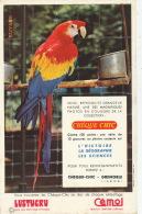 BUVARD - CHEQUE CHIC - PERROQUET - LUSTUCRU - CEMOI  - Format 21X13,7cm - Animals