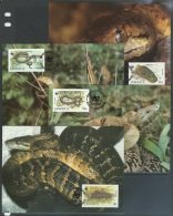 Jamaica  1984  Sc#591-4  Snakes Set  On  4 Maxicards - Reptiles & Batraciens