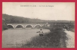 CPA Chamigny - Le Pont Du Sauçoy - Frankrijk