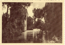 Rotselaar Watermolen - Rotselaar