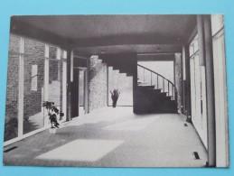 "Westmalle "" Ter DENNEN "" ( R. Van Turnhout ) Anno 19?? ( Zie Foto´s Voor Detail ) ! - Malle"