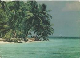 MALDIVES (60) - Maldive