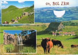 00 - UN BOL D'AIR DU  CANTAL - VACHES SALERS - CASCADE - CHEVAUX - Découpi - 2007 - Auvergne
