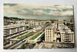 LE HAVRE Vue Panoramique Vers L'Avenue Foch Et Nouveaux Immeubles 1960 - Le Havre