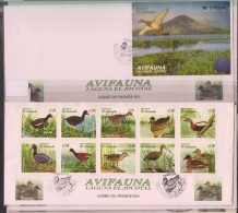 O) 1999 EL SALVADOR,DUCKS-BIRDS,LAGOON  JOCOTAL-FIRST SITE RAMSAR,MIGRATORY BIRD SANCTUARY,VOLCANO CHAPARRASTIQUE, - El Salvador