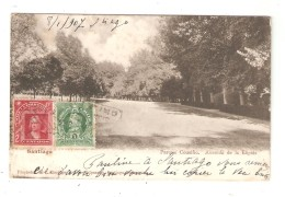 CPA  Chili Chile - Santiago - Parque Cousino - Avenida De La Elipsis 1907 - Chile