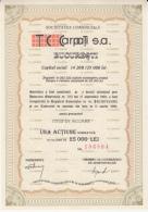 TC CARPATI SA CONSTRUCTIONS COMPANY, SHARES, STOCK, 1996, ROMANIA - Industrie