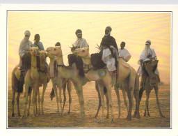 Afrique > NIGER Teguidda N´Tessoumt La Cure Salée  (D) *PRIX FIXE - Niger