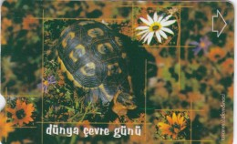 Turkey, N-239, World Environment Day 2002, Tortoise, 2 Scans. - Turquie