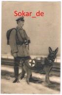 AK Sanitätshund Soldat Rotes Kreuz Red Cross, 1. Weltkrieg, Gel. 1917 Von Laufen Nach Ochsenfurt, Bayern, Unterfranken - War 1914-18