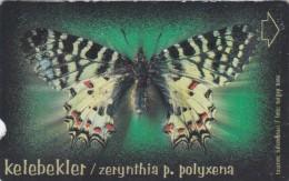 Turkey, N-242, Butterflies, Zerynthia P. Polyxena, 2 Scans. - Turkije
