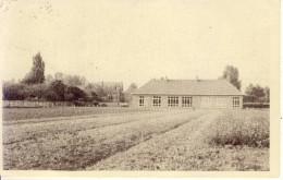 Vorst St Gertrudis Algemeen Zicht Klooster En School 1956 - Laakdal