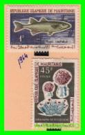 MAURITANIA (  AFRICA   )   2 SELLOS  AÑO 1964 - Mauritania (1960-...)