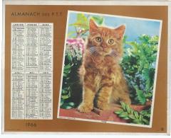 ALMANACH DES POSTES  1966 ( CALENDRIER ) POSE / SURPRISE ! ( CHAT + CHIEN ) - Calendriers