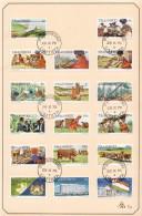 Transkei First Definitive Set On FD Card - Transkei