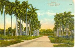 Cuba - Années 20 - Habana - Carretera Central - Jordi Havana - Nº 62 - Colorisée - 2030 - Cuba