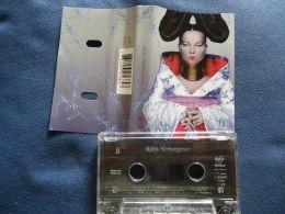 BJÖRK  K7 AUDIO VOIR PHOTO...ET REGARDEZ LES AUTRES (PLUSIEURS) - Cassettes Audio