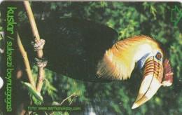 Turkey, N-310, Birds, Sulavezi Boynuzgagasi, 2 Scans. - Turquie