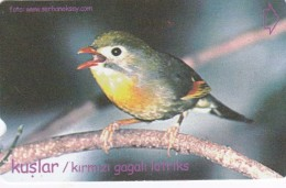 Turkey, N-313, Birds, Kirmizi Gagali Lotrisks, 2 Scans. - Turquie