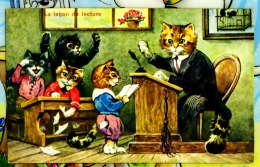 Chats Humanises A L´ecole 2 Scans - Animaux Habillés