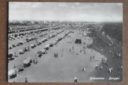 SOTTOMARINA -LA SPIAGGIA   -1955-ANIMATA --- -  BELLA - Sin Clasificación