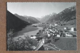 AURONZO DI CADORE -19531---  ---- BELLISSIMA - Italia